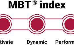 MBT index - de niveaus